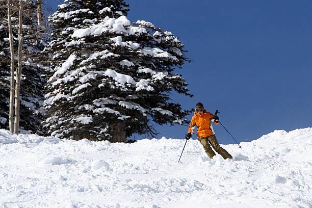 De ski - Photo