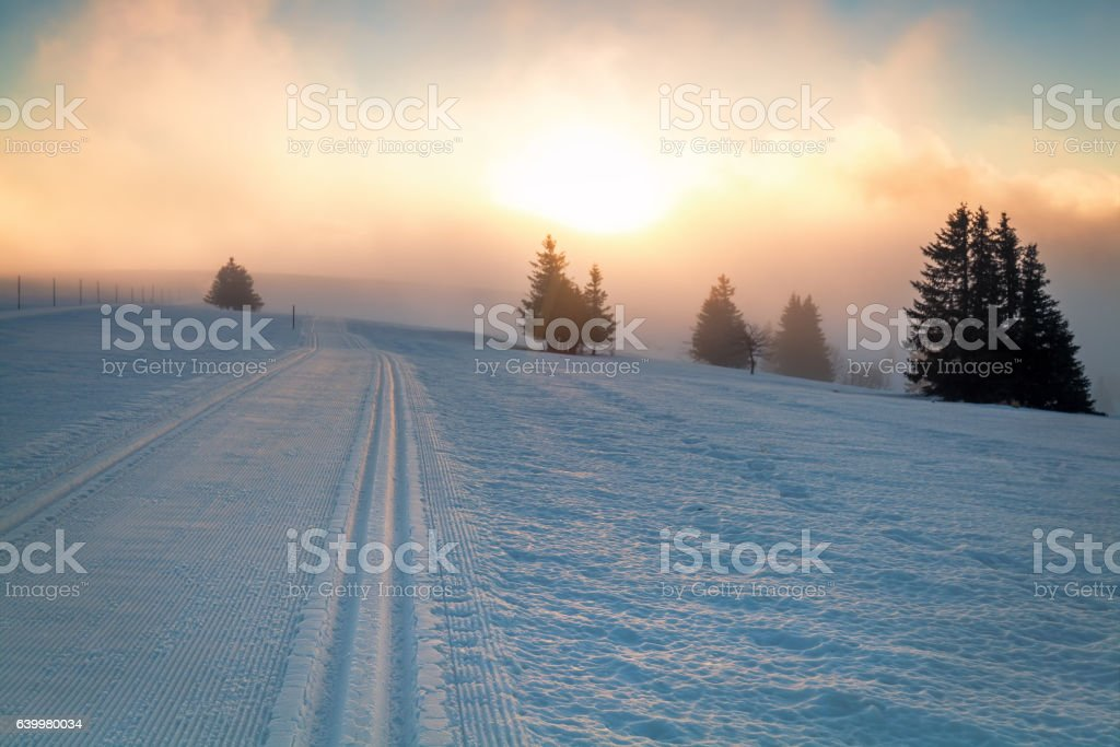 skiing snow path and sunlight stock photo