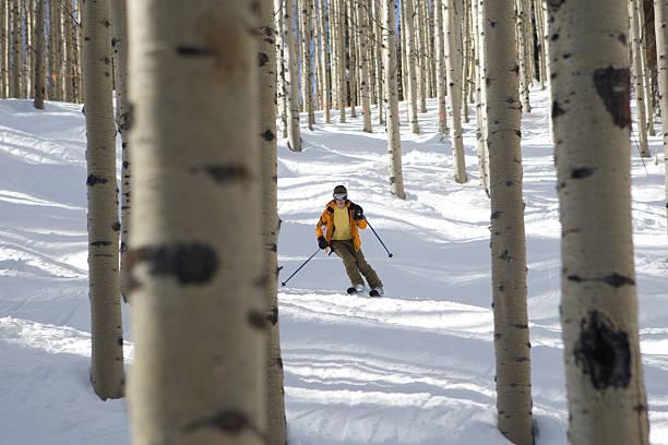 Ski des trembles - Photo