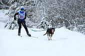 istock Skijoring in Russia. 458272047
