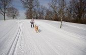 istock Skijoring 183245865