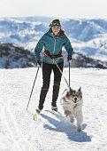 istock Skijoring 947552016
