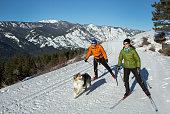 istock Skijoring 947553852