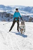 istock Skijoring 947561482