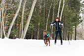 istock A skijoring woman have fun in forest 1078465684