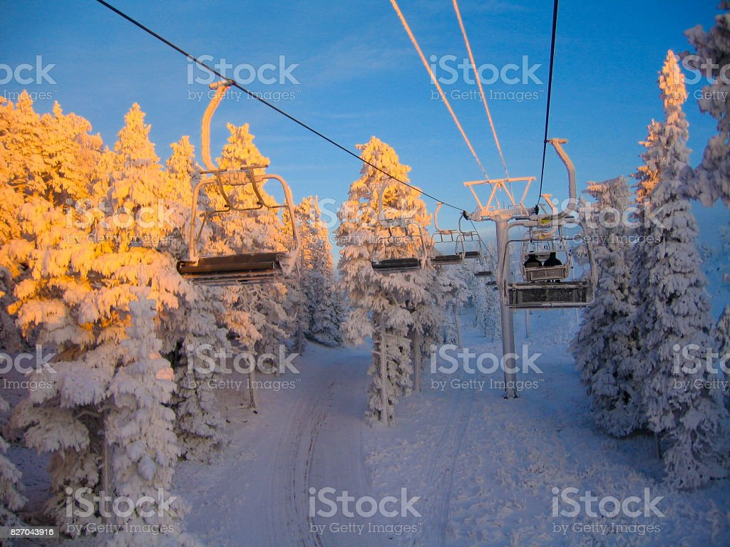 Ski-lifts and snowy forest stock photo