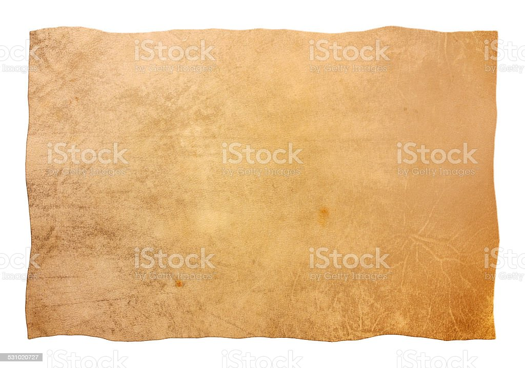 skin - clipping path stock photo