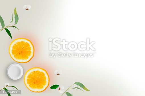 istock Skin cream bottle with natural ingredients rosemary oli cucumber and leaves on white background - Vitamin C concept 1175745601