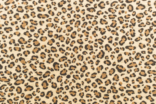 skin of a jaguar. fashionable animal pattern - graphic print stock photos and pictures