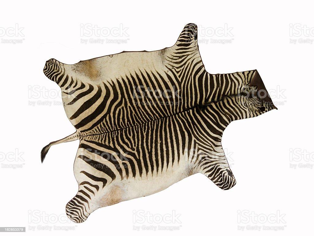 Skin of Zebra stock photo