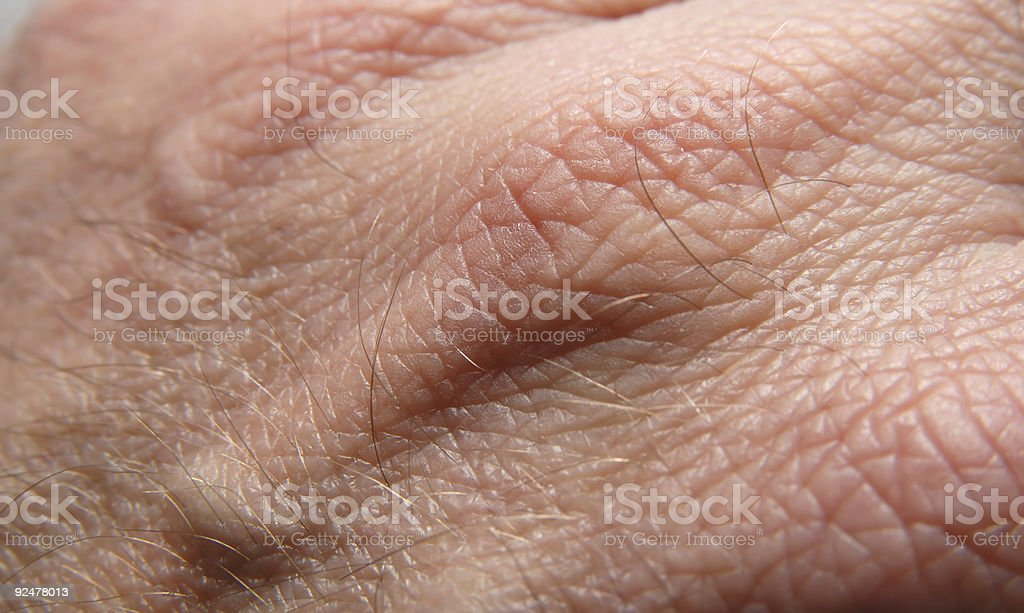 Skin royalty-free stock photo