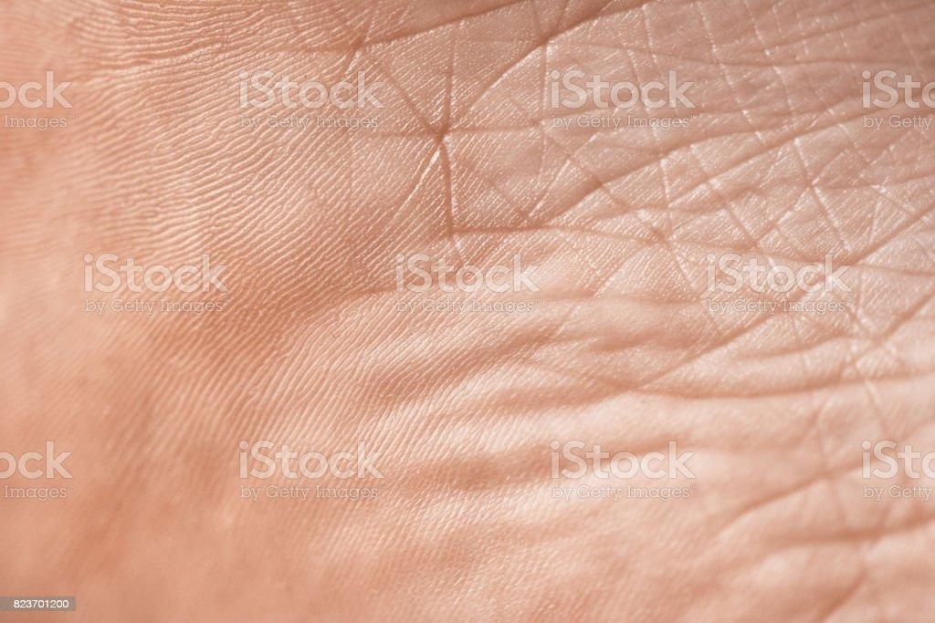 Die Textur der Haut Lizenzfreies stock-foto