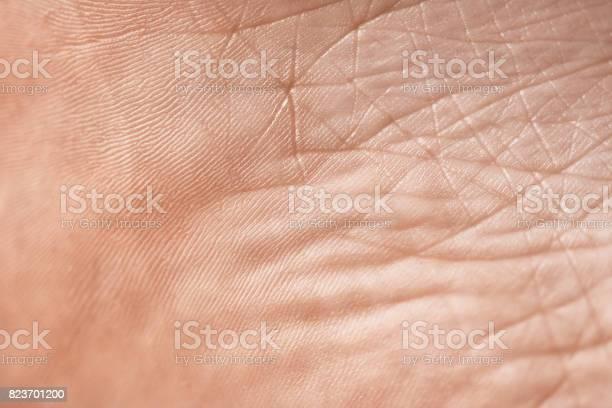Die Textur Der Haut Stockfoto und mehr Bilder von Abstrakt