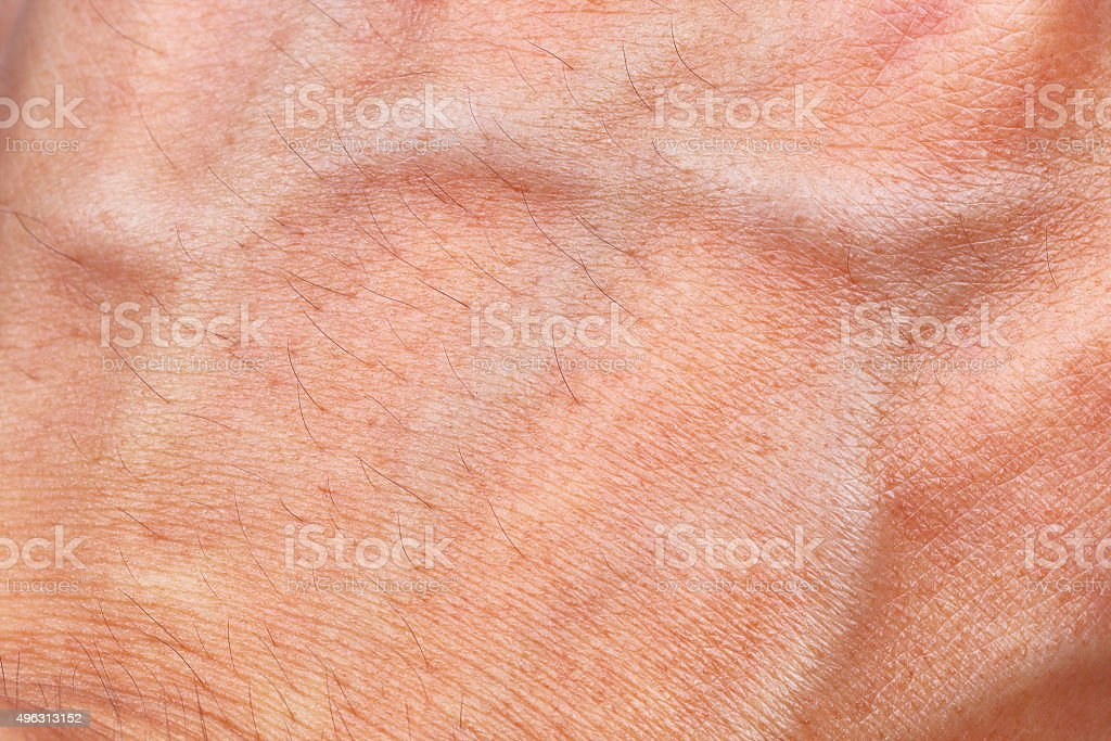 Skin texture with blood vessel and hair stock photo