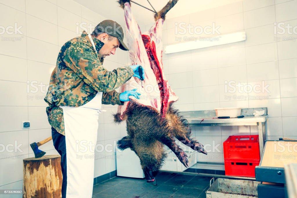 Skinned hunter hunted wild boar stock photo
