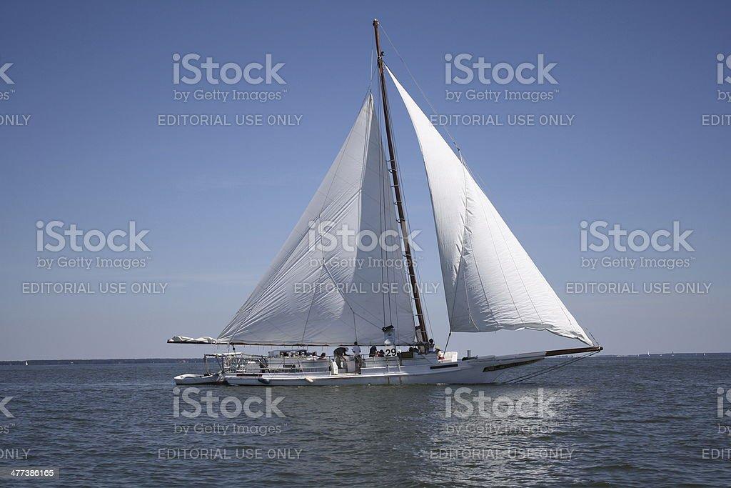 Skipjack Under Sail on the Chesapeake Bay stock photo