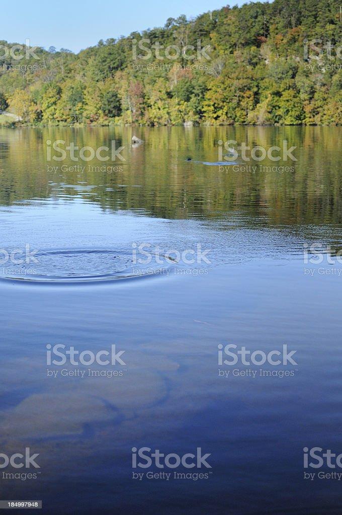 Skipping rock across river or lake stock photo