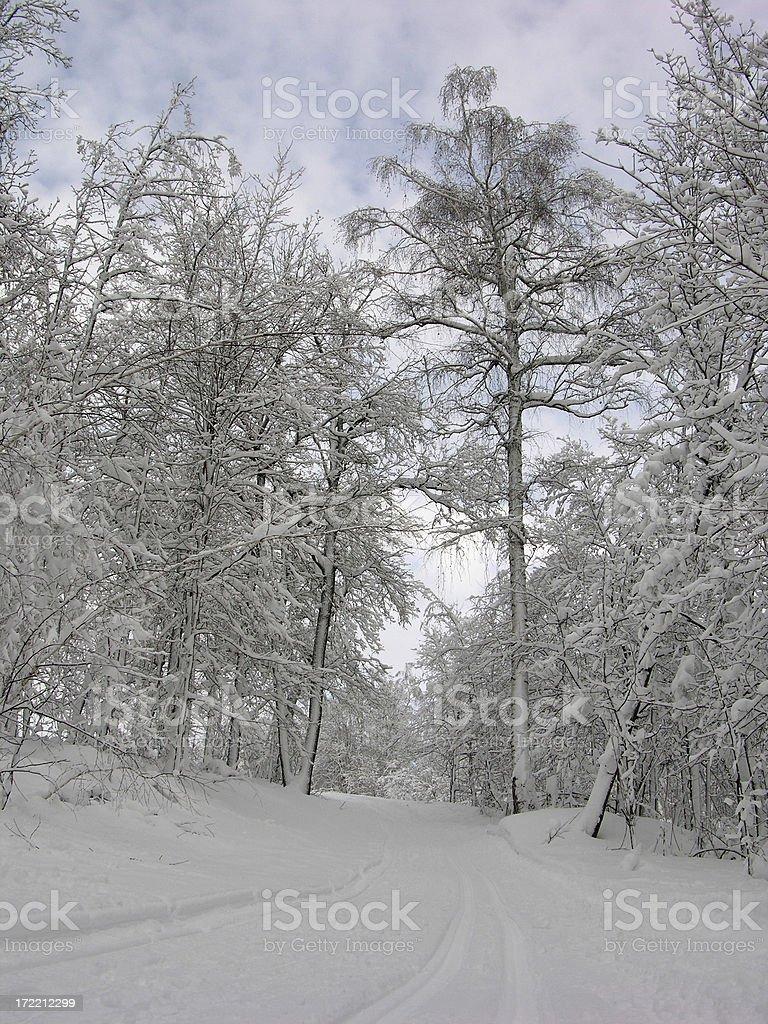 Ski-run royalty-free stock photo