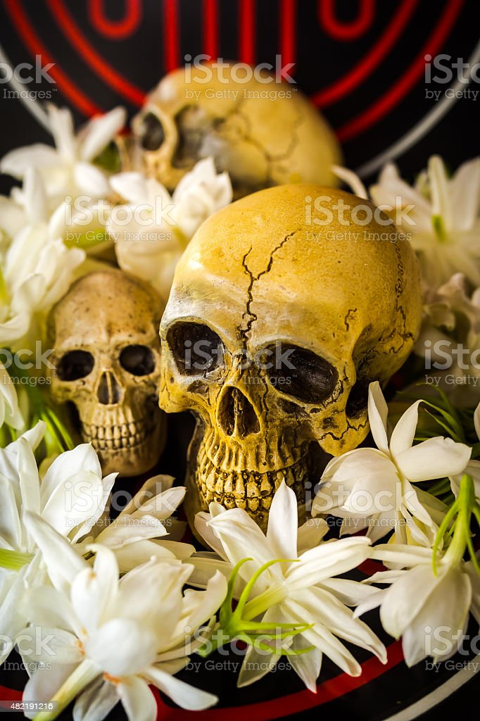 skull and abstract stock photo