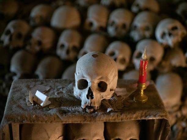 Skull and bones stock photo