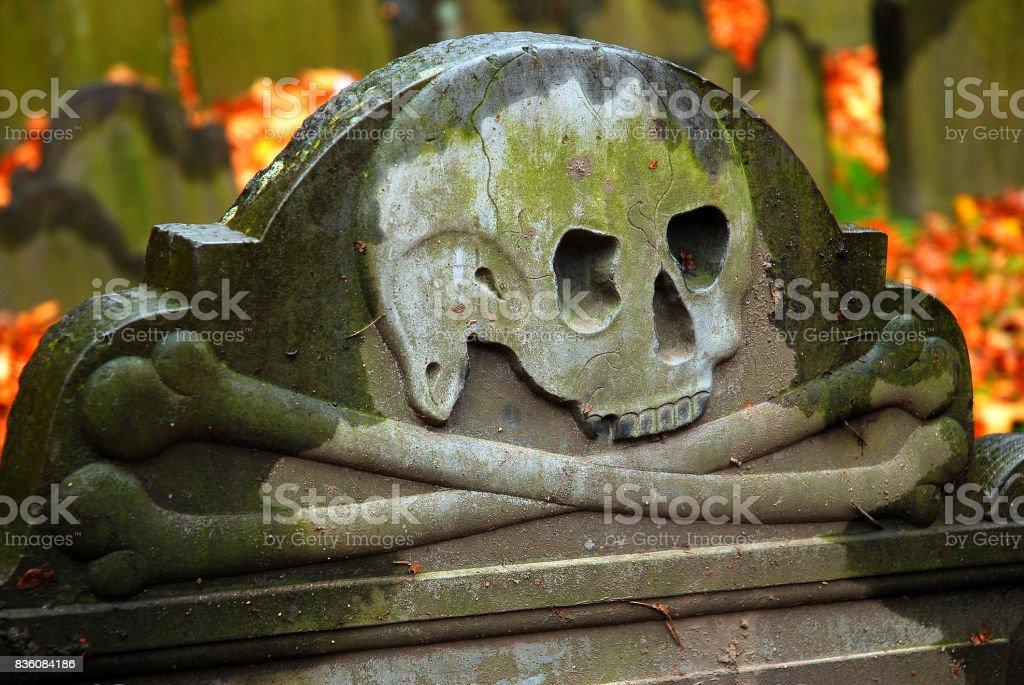 Skull and Bones warning stock photo