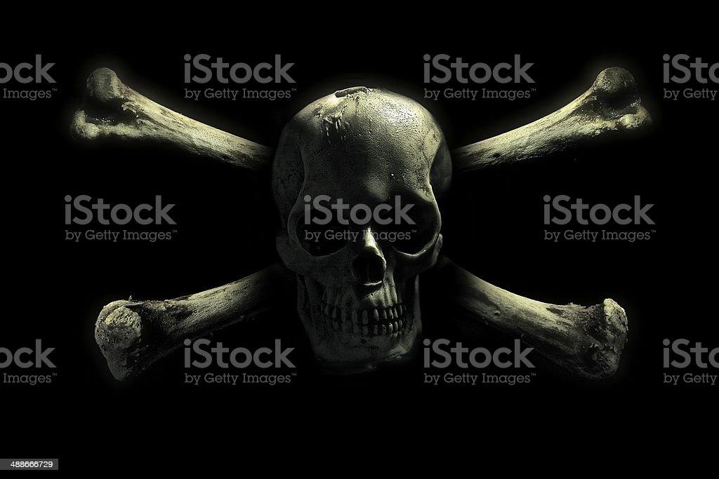 Totenkopf Bilder Und Stockfotos Istock