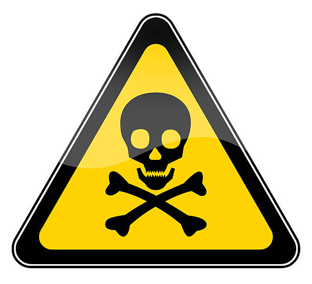 skull danger sign in yellow triangle - symbol stock pictures, royalty-free photos & images