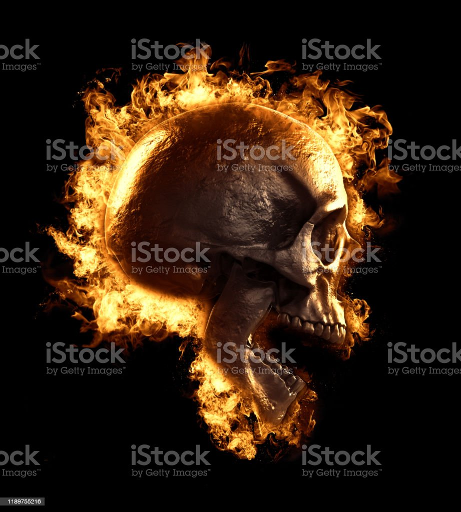 Skull In Fire Wallpaper Skull Human Head Isolated In Empty Background 3d Render Stock Photo Download Image Now Istock