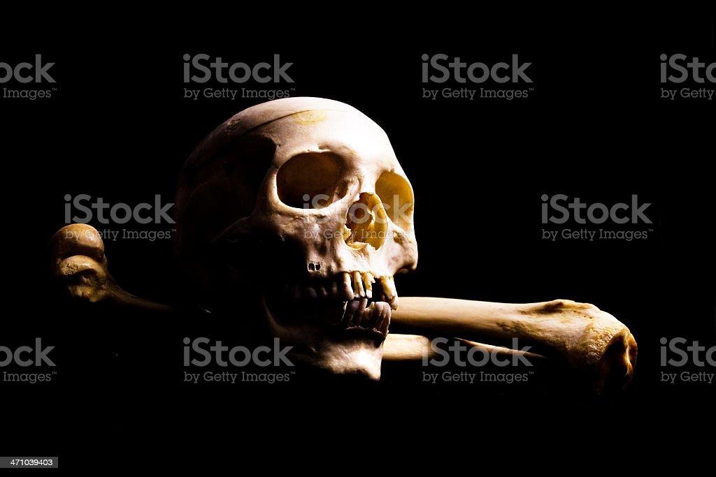 Skull in shadows royalty-free stock photo