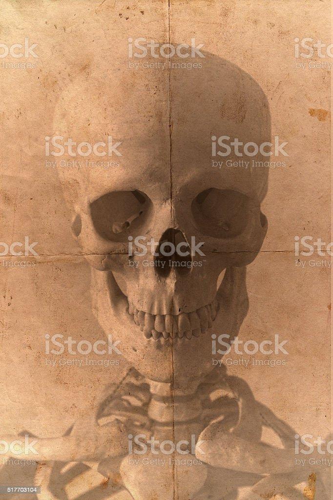Skull Old Photo Style stock photo