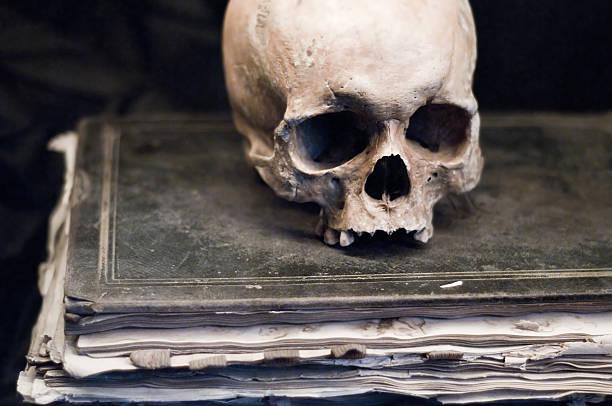 schädel auf buchen - anatomie buch stock-fotos und bilder