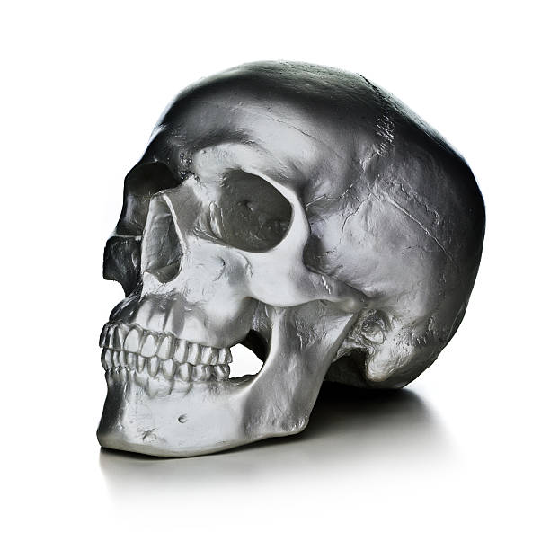skull on white background angle view of a fake plastic human skull with metallic painting isolated on white background deathly stock pictures, royalty-free photos & images