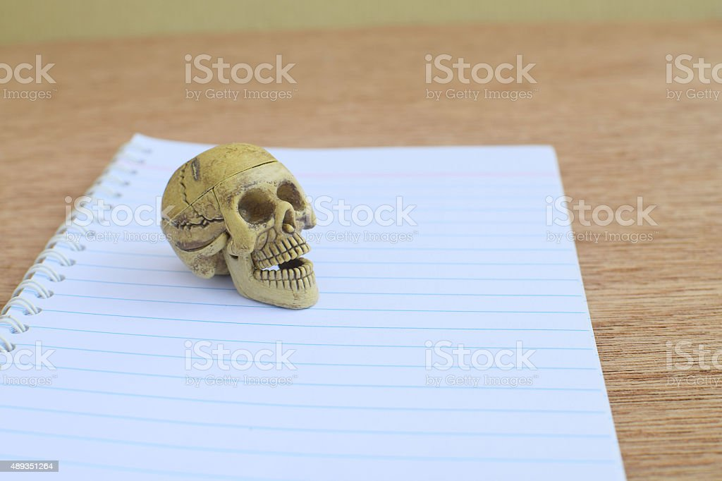 Skull on white paper notebook stock photo