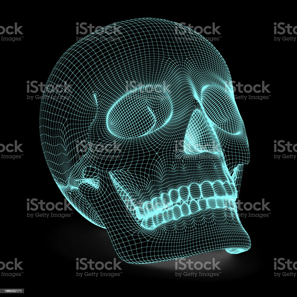 Skull royalty-free stock photo