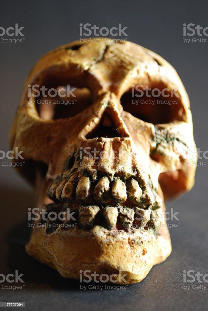 Totenkopf stock photo