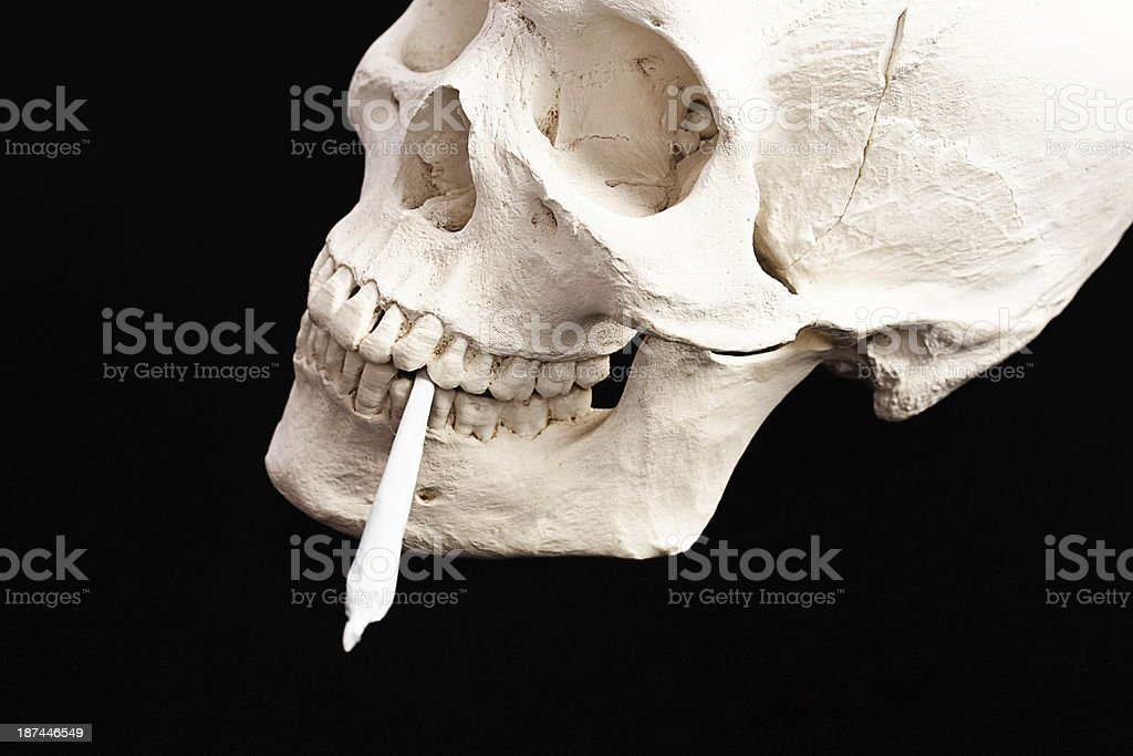 Skull smoking joint. In the end, drugs will kill you stock photo