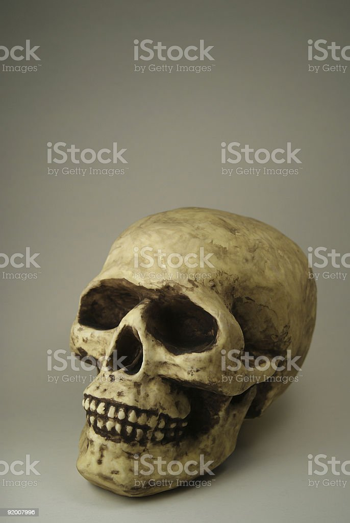 Skull Vertical Portrait royalty-free stock photo