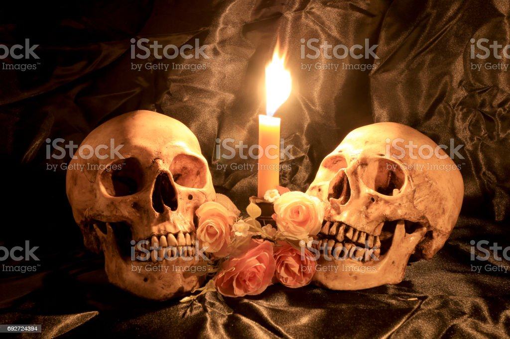 Skull with Bunch of flowers and candle light on wooden table with black background in night time / Still life style