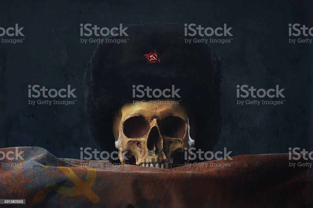 Skull with russian Uschanka and Flag stock photo