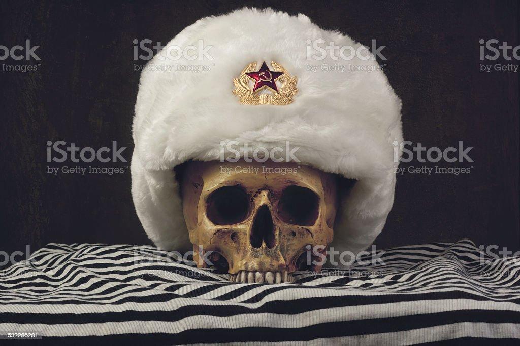 Skull with white russian Uschanka stock photo