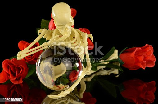 A human skeleton looks into the crystal ball surrounded by roses.