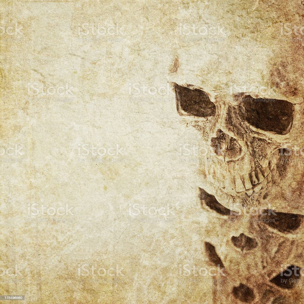 Skulls on Old Paper stock photo