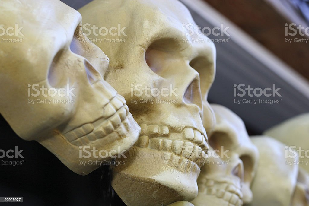 Skulls on Parade royalty-free stock photo
