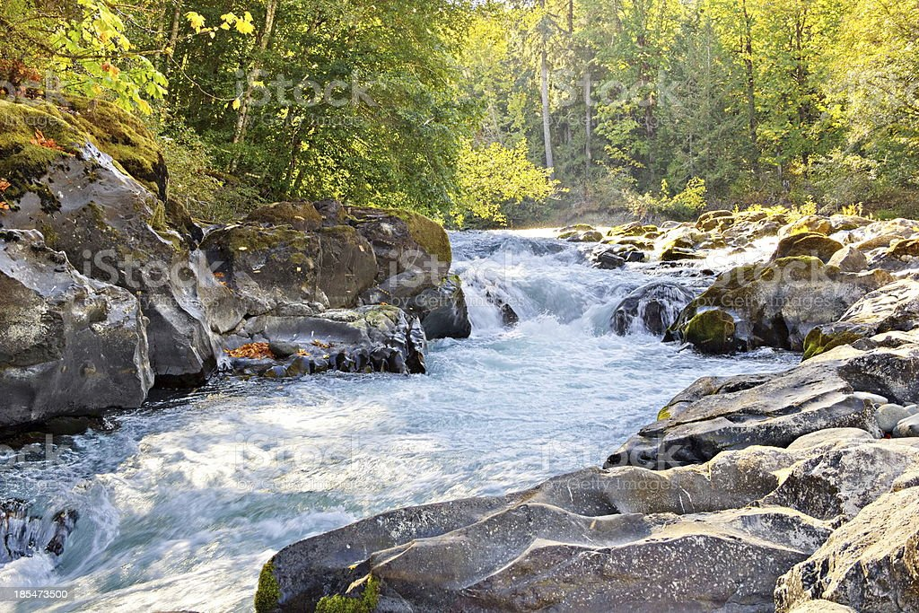 Skutz Falls at Cowichan River Provincial Park stock photo