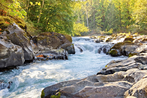 Skutz Falls At Cowichan River Provincial Park Stock Photo - Download Image Now