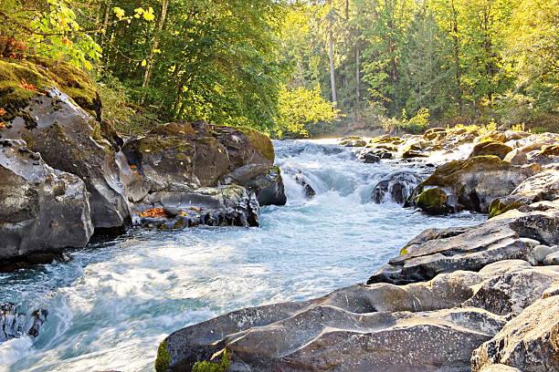 Skutz Falls at Cowichan River Provincial Park stock photo