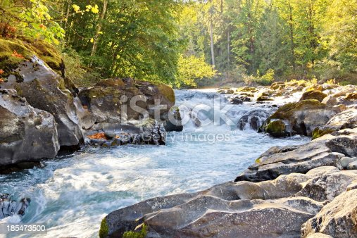 Skutz Falls At Cowichan River Provincial Park Stock Photo & More Pictures of Autumn
