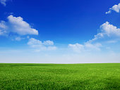 peaceful blue sky and green grass great as backround