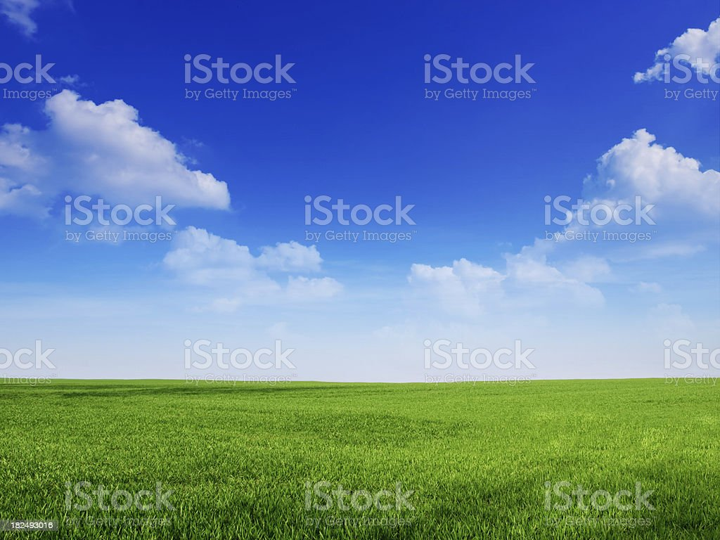 sky and grass backround stock photo