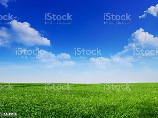 Photo of sky and grass backround